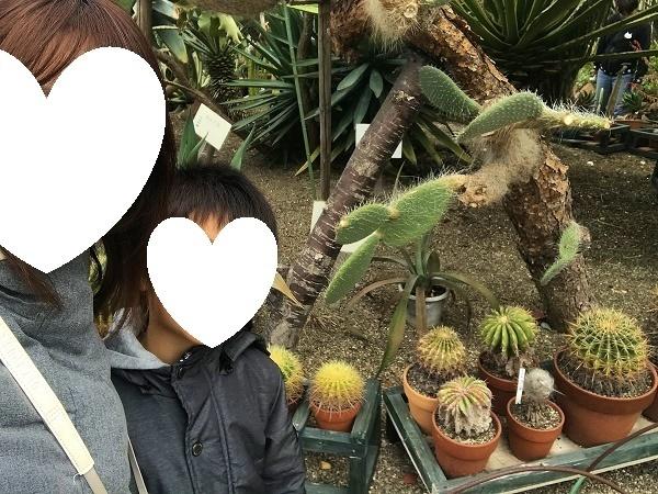 函館市熱帯植物園温室内2.jpg