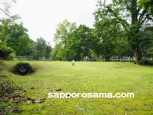 道民の森一番川地区オートキャンプ場広々とした体感の森.png
